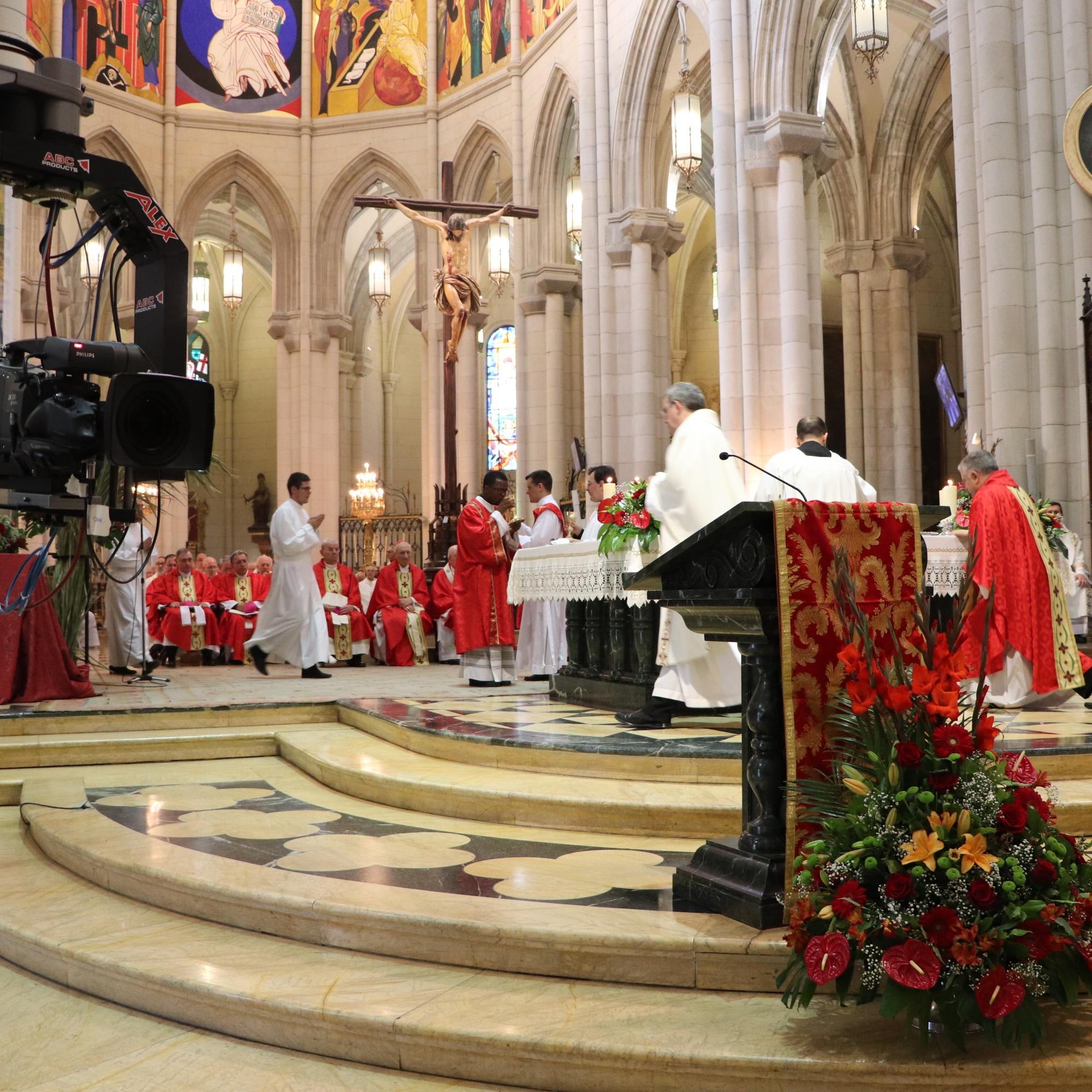 Beatificación martires concepcionistas
